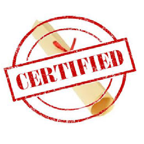 Certified IT Professionals